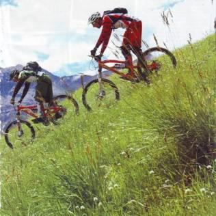 0810 Vélo Vert (2)