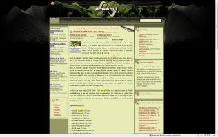 09 09 DH 911 Website
